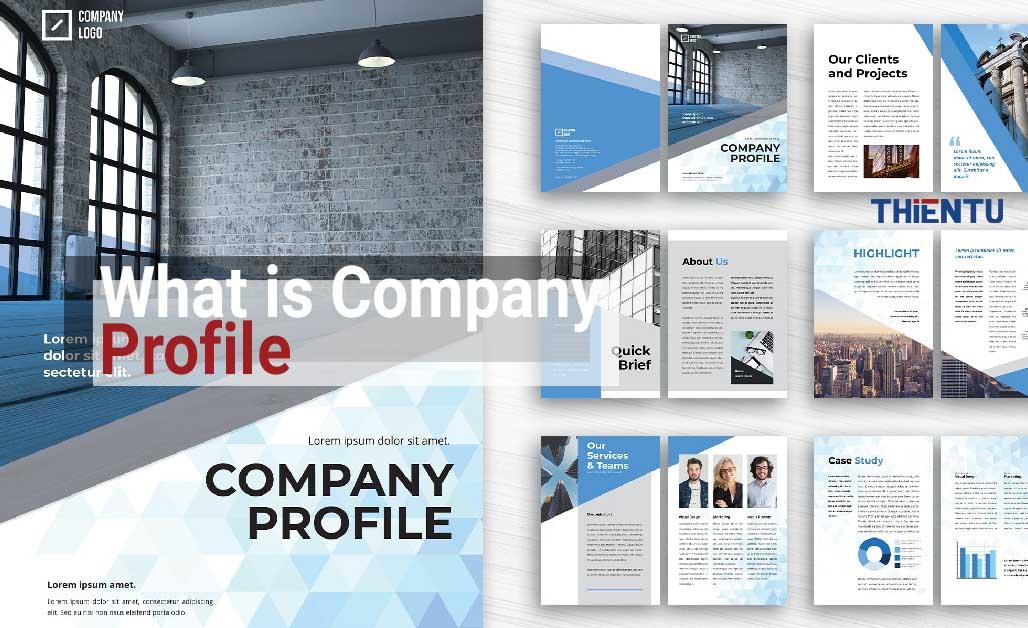 Company profile là gì