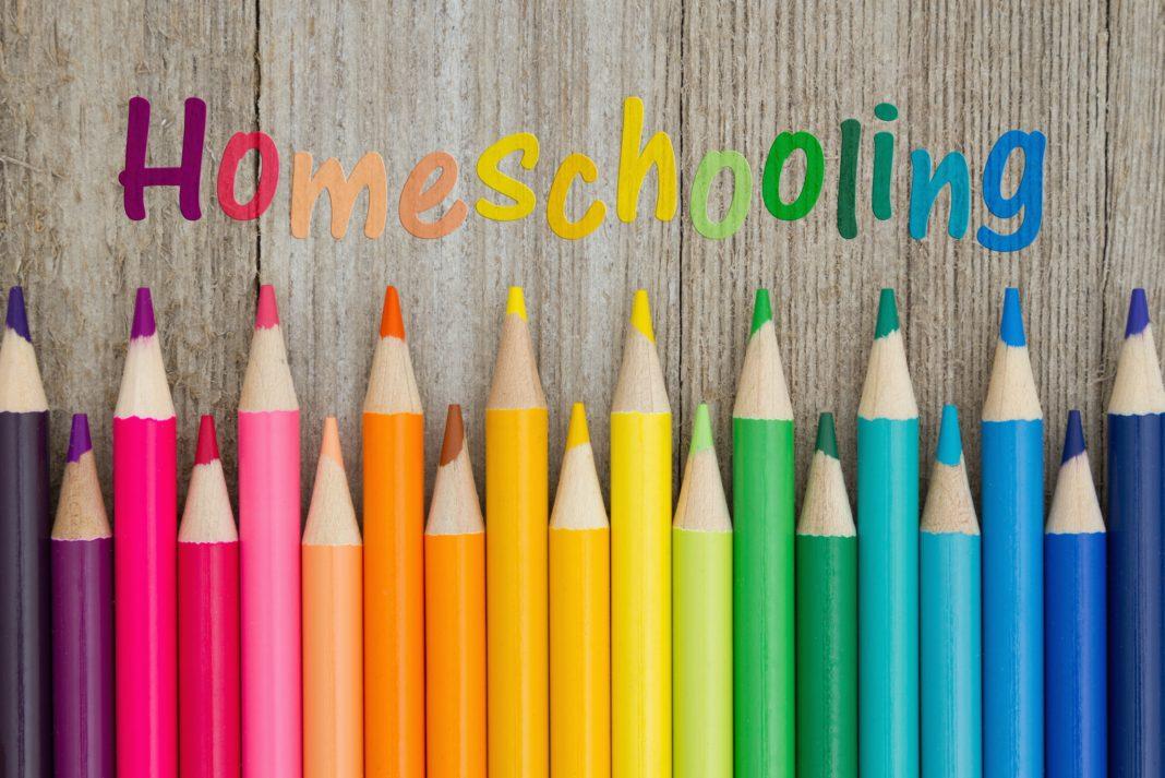 Có nên cho con học homeschooling hay không?