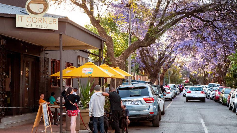 Đường số 7 hoa tím khu dân cư Melville ở Johannesburg